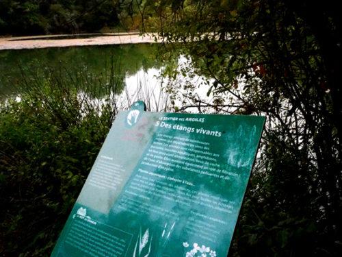 pupitre au bord des étangs